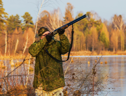 How The Steel Shot Is Better For Waterfowl